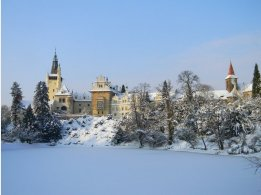 Pruhonický park - zima