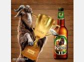 Velkopopovický Kozel 11° - pivo roku Pivex 2014