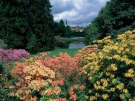 Průhonice - park a zámek (UNESCO)
